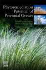 Phytoremediation Potential of Perennial Grasses
